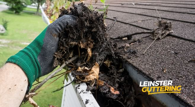 Gutter Cleaning Dublin